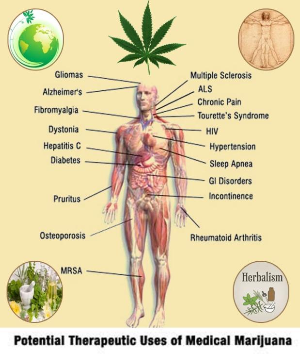 420 medical